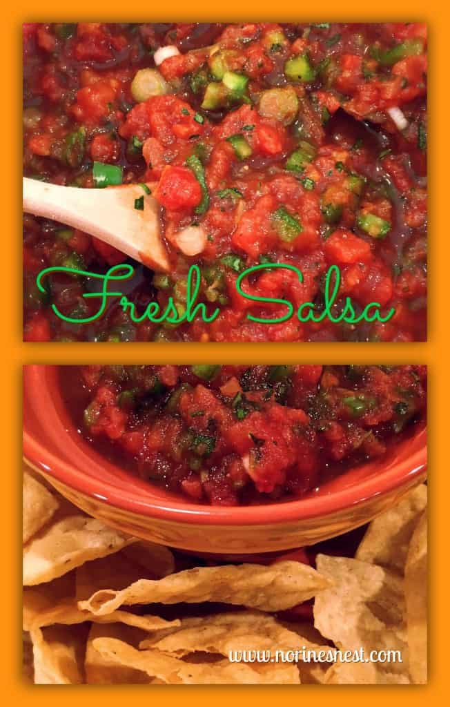 Fresh Homemade Salsa Recipe at Norine's Nest.com