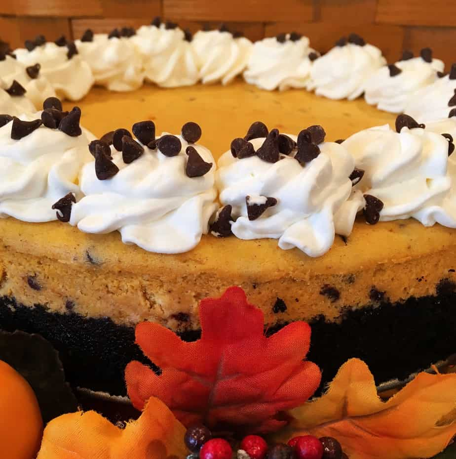 Cheese cake made with pumpkin and chocolate chips and whip cream