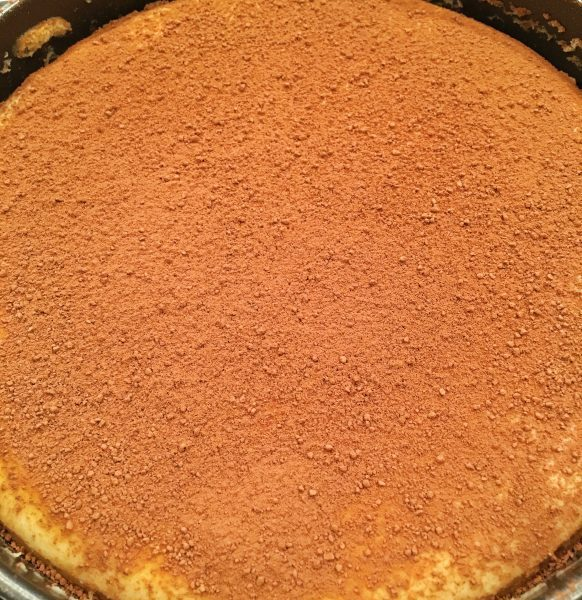 tiramisu-cheesecake sprinkled with cocoa
