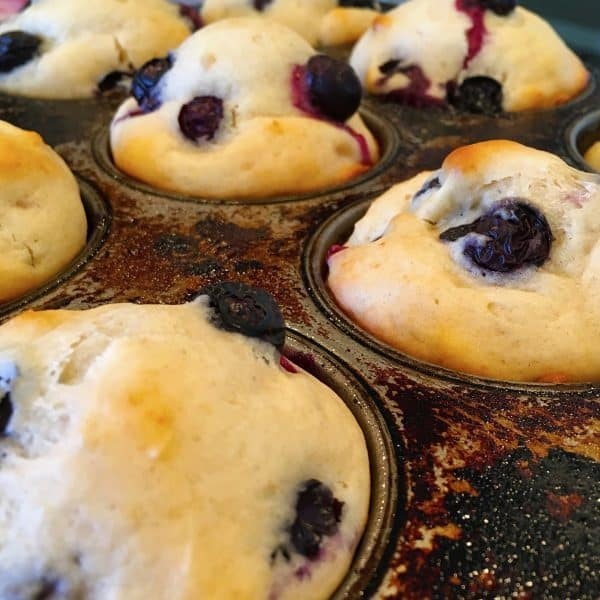 baked blueberry muffins in muffin tins