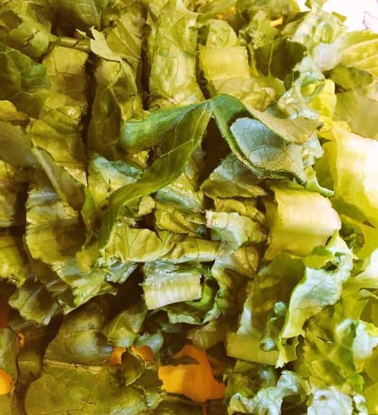 washed and torn romaine lettuce in a bowl