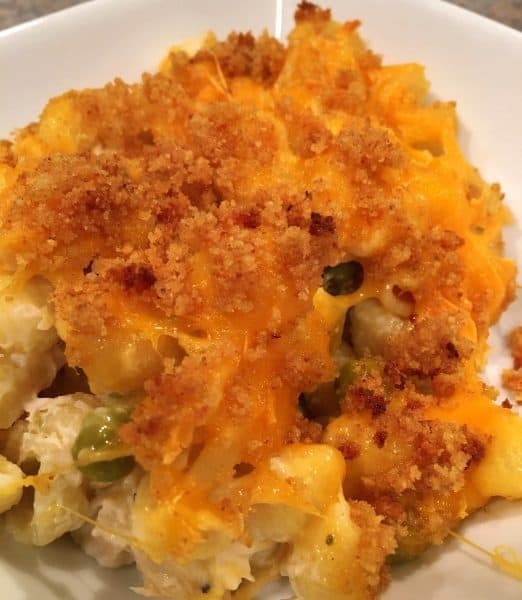 serving of Tuna Noodle casserole on dinner plate