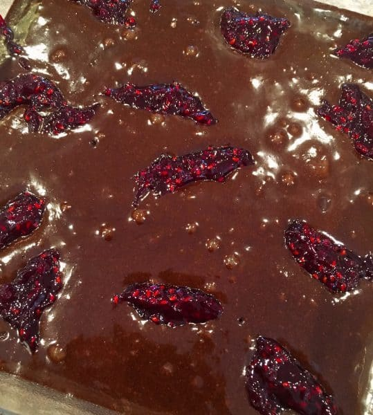 Dark brownie batter with Raspberry filling dabs