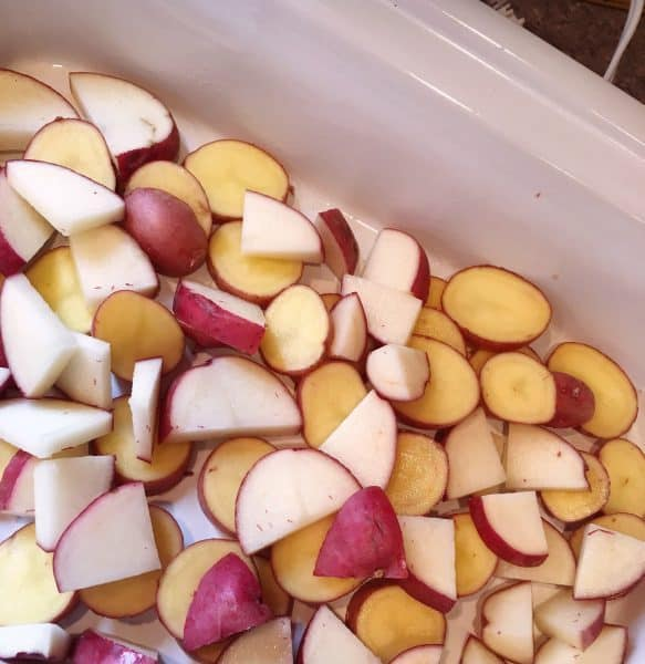 Cubed red potatoes in bottom of slow cooker casserole dish