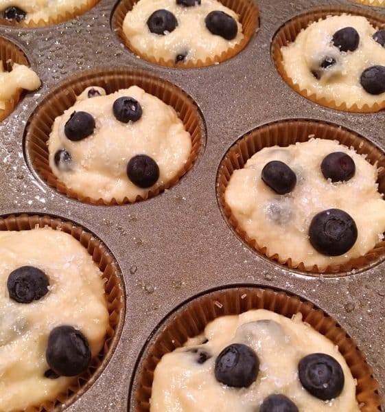 blueberry batter in muffin pans