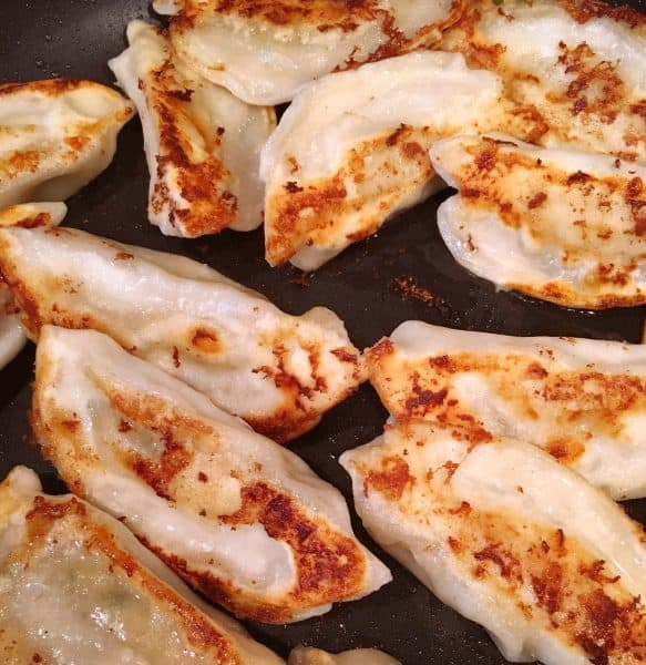 Browned Potsticker