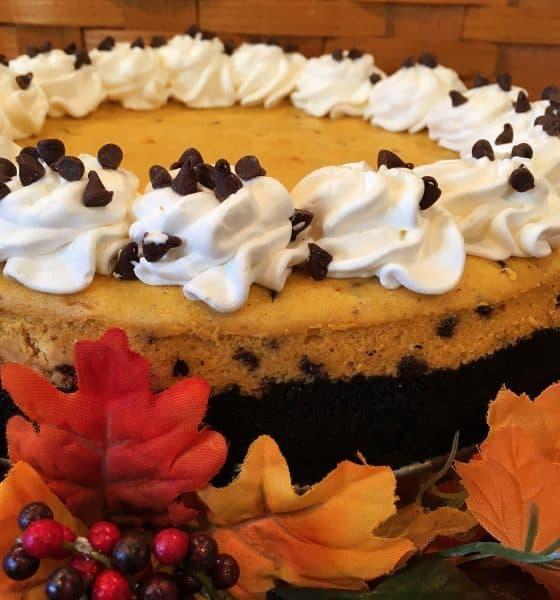 Creamy Rich Pumpkin Chocolate Chips Cheesecake