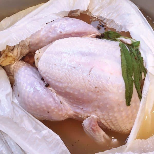Removing Turkey from Brine Bag