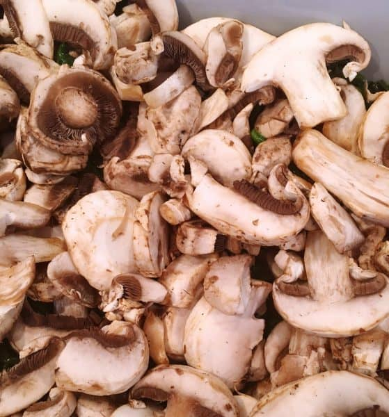 Fresh mushrooms