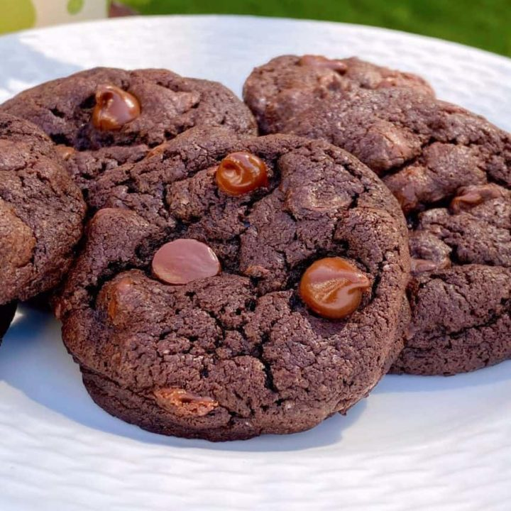 Chocolate Chocolate Chip Cookies on a white plate.