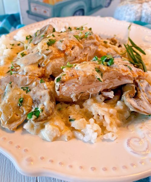 Chicken and mushroom sauce served over steamed rice